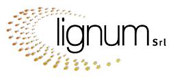 Lignum | Scale e Parquet